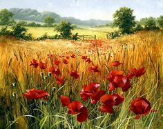 Cornfield Poppies by Mary Dipnall (born British painter. Nature Paintings, Beautiful Paintings, Watercolor Paintings, Original Paintings, Landscape Art, Landscape Paintings, Poppy Field Painting, Painting Techniques, Love Art
