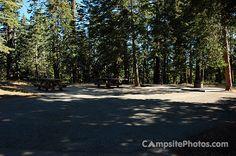 Dogwood 13 - Dogwood Campsite Photos - campsitephotos.com