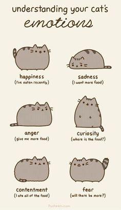 Ah cats :)
