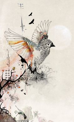 bird cage -- I LOVE this Israeli artist. she's incredibly talented.