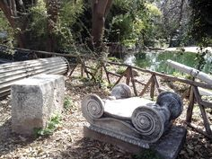 National Gardens in the center of Athens