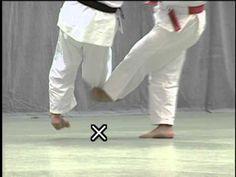 Kodokan's Nage-no-Kata