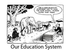 Our education system....