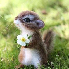 Je partage cette photo pour t'offrir une petite fleur et un petit sourire ;)     #jeudiPhoto #Photo