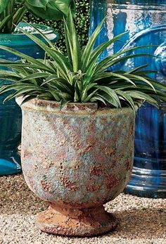 With a distinct texture and unique coloring, these distinctive planters add lava-like character to outdoor spaces. Smooth terracotta on the inside, variegated blue and terracotta outside, the Delaney Planters make a statement whether indoors or out. Pet Home, Stoneware Clay, Terracotta, Lava, Outdoor Spaces, Coloring, Planters, Smooth, Texture