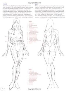 Female Anatomy Drawing Reference Guide 100 Satisfaction Lessons How To Draw Female Anatomy Human Anatomy Drawing, Drawing Female Body, Human Figure Drawing, Figure Drawing Reference, Anatomy Reference, Art Reference Poses, Human Anatomy Female, How To Draw Anatomy, Drawing Body Proportions