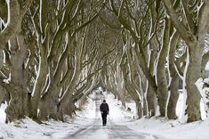 """17 Places Every """"Game Of Thrones"""" Fan Needs To Visit #gameofthrones #gamesofthroneslocations #ireland"""