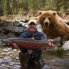 Look at My Big Fish! Why Are You Running Away? Bear Hunting Photobomb: This guy is in for a big surprise and will probably shit in his pants in 3 2 Animals And Pets, Funny Animals, Cute Animals, Funniest Animals, Animal Fun, Wild Animals, Funny Bears, Mundo Animal, Tier Fotos