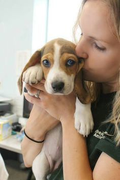 Beagle love :) And a nice girl :P