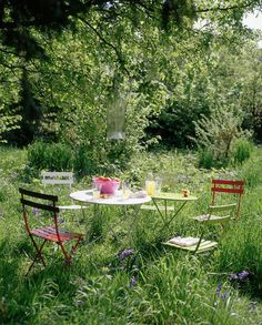 This is the garden I want. All overgrown but so pretty. Proper English styles.