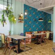 Giving any space an elegant underwater scene, Nautilus is a marine inspired design from Cole & Son's Whimsical collection of nostalgic prints. Restaurant Interior Design, Cafe Interior, Dining Room Feature Wall, 1960s Kitchen, Cafe Wall, Cole And Son, Beautiful Space, Beautiful Homes, Blue Wallpapers
