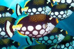 Jak wygląda podwodne życie na rafie koralowej? Pobierz niesamowite, darmowe  tapety ze zdjęciami zrobionymi pod wodą. Wystarczy, że klikniesz w to foto a przejedziesz na naszą stronę z darmowymi pobraniami :)