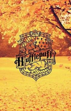 Join the HUFFLEPUFF SQUAD! If you know a Hufflepuff tell them join! XD 💛 in hufflepuffisthebesthousebutwestillrespectotherhouses in badgers (I don't ow. Harry James Potter, Harry Potter Tumblr, Mundo Harry Potter, Harry Potter Room, Harry Potter Cast, Harry Potter Movies, Harry Potter Hogwarts, Harry Potter World, Hufflepuff Pride
