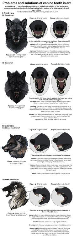 Fixing canine teeth and common anatomy errors by KFCemployee drawing illustration painting resource tool how to tutorial instructions | Create your own roleplaying game material w/ RPG Bard: www.rpgbard.com | Writing inspiration for Dungeons and Dragons DND D&D Pathfinder PFRPG Warhammer 40k Star Wars Shadowrun Call of Cthulhu Lord of the Rings LoTR + d20 fantasy science fiction scifi horror design | Not Trusty Sword art: click artwork for source