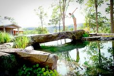 very nice natural swimming pool.  i'm a fan.  i also really like that great big rock bridge, except it might be a bit impractical (would it get slippery?) and might not look nearly as purdy if you had to put rails on it.