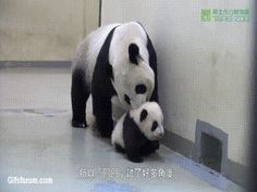 Mom, Noooooo!