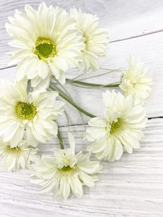 This Cream Paris Daisy Bush is long. Spring Wreaths, Summer Wreath, Front Door Decor, Wreaths For Front Door, Spring Decorations, Home Decor Inspiration, Farmhouse Decor, Florals, Diy Home Decor
