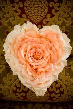 Peach heart-shaped Glamelia bouquet. Tania Lezak Photography