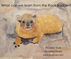 Sunday Stillness - What can we learn from the Rock Badger? - Growing Through God's Word Wise Proverbs, Rest In The Lord, God Will Provide, Prayer Warrior, Jesus Is Lord, Names Of Jesus, Badger, Monday Motivation, Holy Spirit