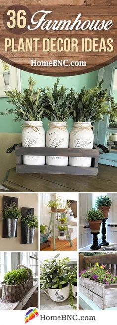 Farmhouse Plant Decor Ideas