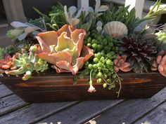A Newport Beach Collective of local artist, artisans and entrepreneurs, working together to make a great place to shop, create and connect. Seaside Home Decor, Succulents In Containers, Newport Beach, Local Artists, Hostess Gifts, Container Gardening, Great Places, Artisan, Gardens