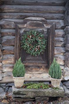 Decoration, Grapevine Wreath, Grape Vines, Terrarium, Wreaths, Plants, Christmas, Holidays, Home Decor
