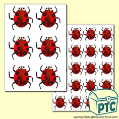 Ladybird Themed Big and Small Sheets - Primary Treasure Chest