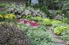 Champaign-Urbana IL 2015 Garden Walk