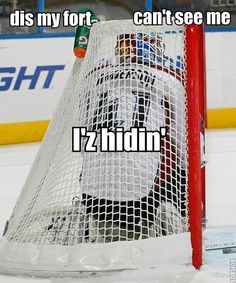 Funny goalie, hockey