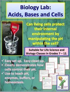Biology Lab:  Acids, Bases and Cells