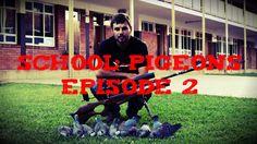 School Pigeons Episode 2 - Daystate Wolverine .22 Type B