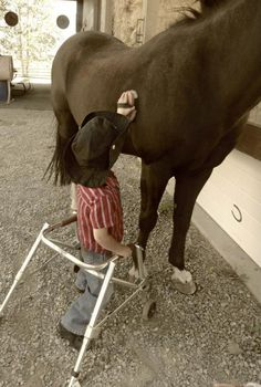 """Horse therapy: It has been proven that working (brushing, riding etc) with horses is good medicine for humans whether riding or brushing. The saying is so true: """"The outside of a horse is good for the inside of a man."""""""