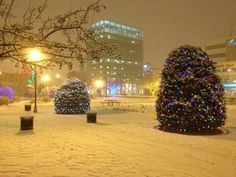 Wintery scene in Red Deer, Alberta's third largest city. Red Deer Alberta, Places Ive Been, Places To Go, Western Canada, Largest Countries, Live In The Now, Future Travel, Months In A Year, Alberta Canada