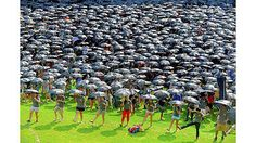 Dancin' on the lawn: University of Pittsburgh freshmen set a world record - Pittsburgh Post-Gazette