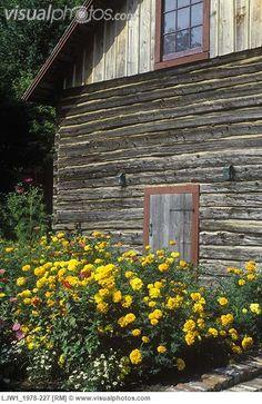 beside the barn
