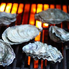 Learn How to Grill Oysters. 3 Minutes to a Morsel of Perfection! Great tips on oysters. #Oysters