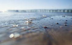 Gdynia, Orłowo, Zdjęcia, Morze Bałtyckie, Baltic, Sea, Wydruki, Fine Art, Fotografie, Ścienne, Morskie, Nadmorskie, Krajobraz Nadmorski, sea baltic gdynia orłowo wydruki
