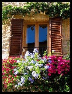Flores na janela em Assis, Itália.