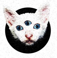 #diseñografico #PerLaLluna #graphicdesign #diseño #desing #photoshop #adobe #fotomanipulacion #flyer #marketing #marketingdigital #dibujo #draw #digitalart #art #arte #artedigital #gato #cat #lsd #psicodelic #picame #lovewatts #ojos #psicodélico #lowpoly #lowpolycat #lowpolygato #designdraw