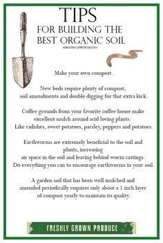Gardening Compost Tips for Building Organic Garden Soil - A Healthy Life For Me - Tips for Building Organic Garden Soil Garden Compost, Veg Garden, Garden Soil, Vegetable Gardening, Veggie Gardens, Garden Plants, Permaculture Garden, Flower Gardening, Garden Care