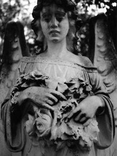 weeping angel - Bonaventure Cemetery