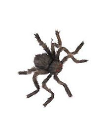 20 Inch Hairy Spider Decoration - Creep out your guests with this creepy, crawly, giant spider decoration! This is a classic Halloween accessory, a 20 inch furry spider with Spider Decorations, Halloween Decorations, Creepy, Scary, Giant Spider, Halloween Spider, Halloween Accessories, Outdoor Halloween, Hallows Eve
