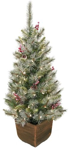 4' Alpine Entryway Artificial Christmas Tree with 70 Clear Lights