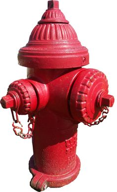 vintage fire hydrant images | Figure 1.6. City treetrunk. Not a tree.
