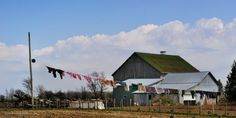 a Missouri Barn maybe?