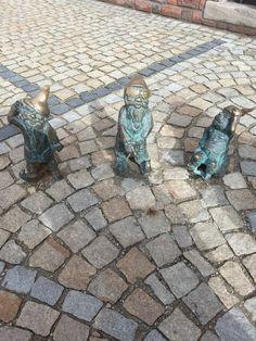 Wroclove's dwarfs