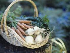 Ellit.fi - Kivikautinen ruokavalio – Optimaalista ravintoa elimistölle