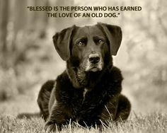 Words proven true by my sweet little man Fritz.