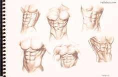 Male torso study for the six pack lovers by rafater.deviantart.com on @deviantART