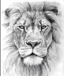 Awesome lion!! Wish I could draw this
